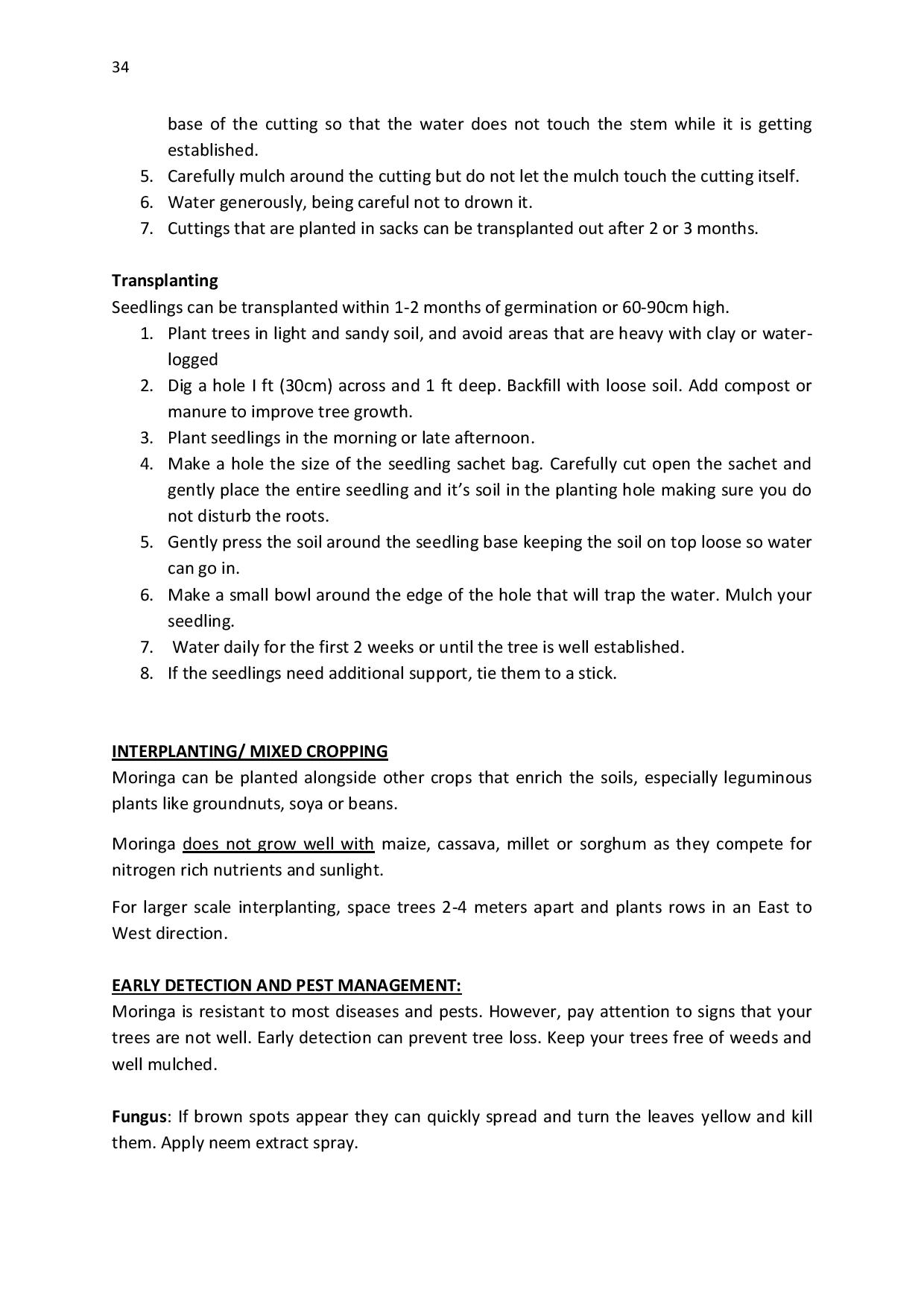 gen-ghana-youth-p-l-a-n-t-moringa-school-garden-manual-page-034